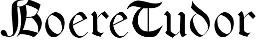 BoereTudor